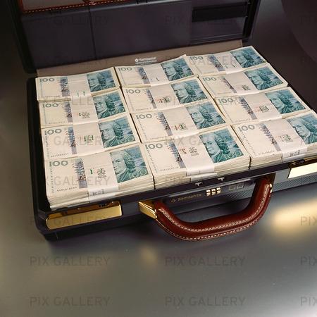Svenska 100 kr sedlar i portfölj