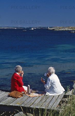 Äldre tanter har picnick på brygga
