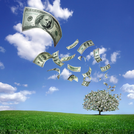 Dollar bills falling from the Money Tree