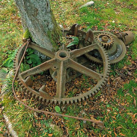 Träd och kugghjul