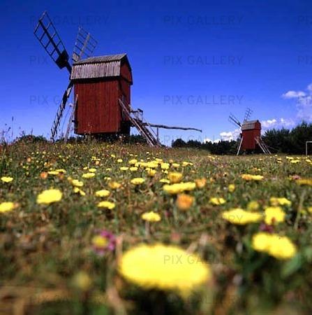 Väderkvarnar, Öland