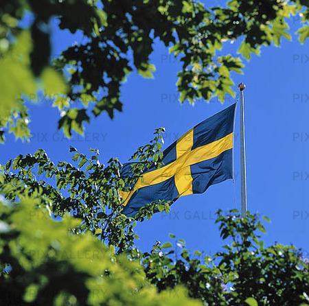 Bild På Svenska Flaggan 8itx9h Rights Managed Foto Bildbyrå Pix