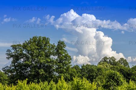 Natur och himmel