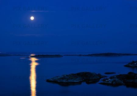 Fullmåne över kustlandskap