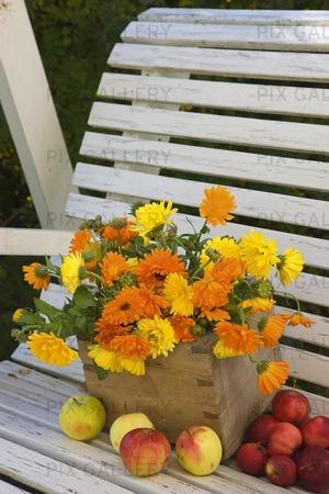 Blommor och frukt på trädgårdsbänk