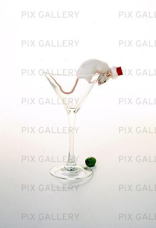 Vit mus i cocktailglas