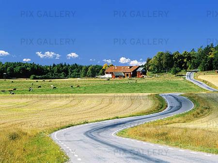 Krokig väg, Östergötland