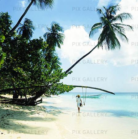 Kvinna på palmstrand