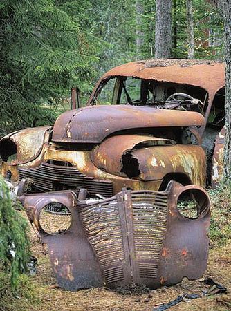 Skrotbilar i skog