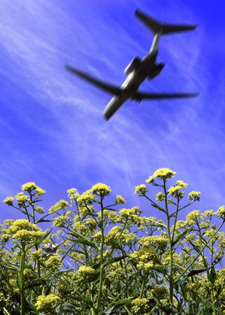 Flygplan  som flyger över gröna växter