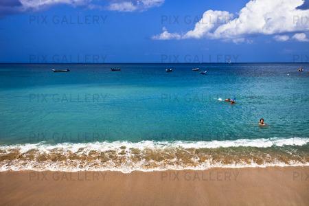 Strand In Martinique