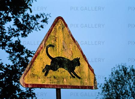 Trafikskylt -Katt