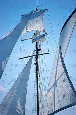 Segel på segelfartyg
