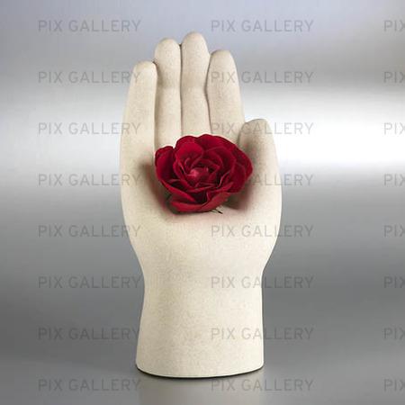 Hand med ros
