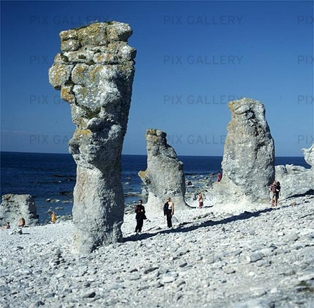 Raukar, Gotland