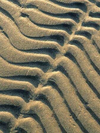 Spår i sand