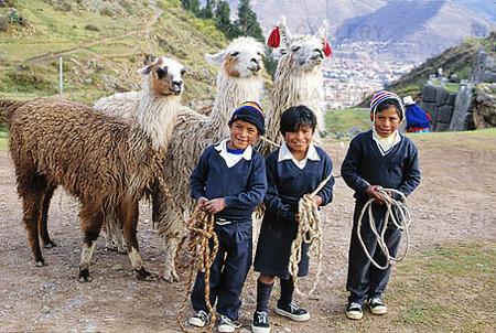 Indianbarn med lamadjur, Peru