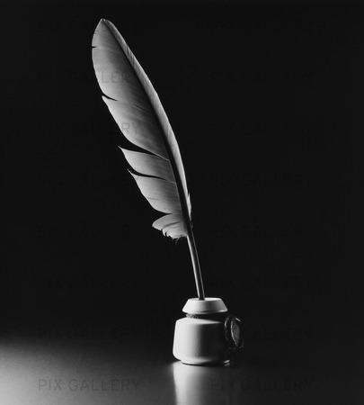 Fjäderpenna