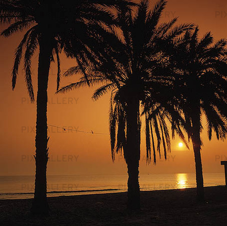 Soluppgång vid Medelhavet, Tunisien