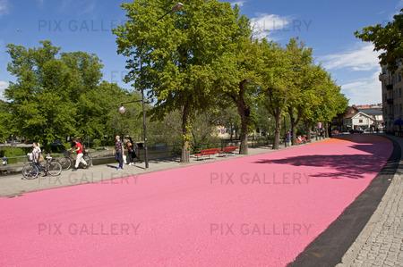 Gågata i rosa i Örebro, Närke
