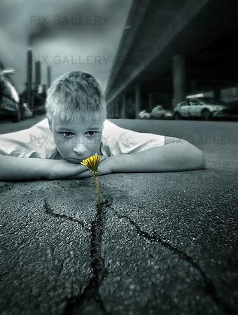 Pojke med blomma i asfaltspricka