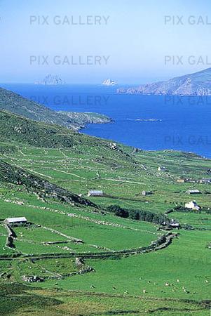 Irländskt kustlandskap