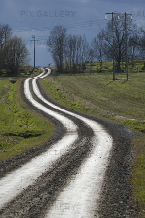 Singrig grusväg