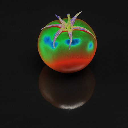 Idèbild  tomat  ( solariserad )