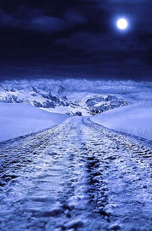 Vinterväg i fullmåne