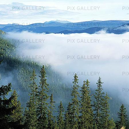 Naturlandskap i moln