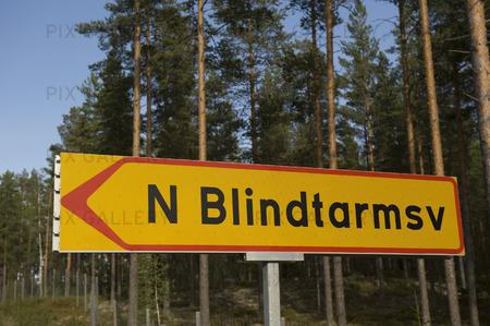 Styckmordet vid Blindtarmsvägen i Bollnäs