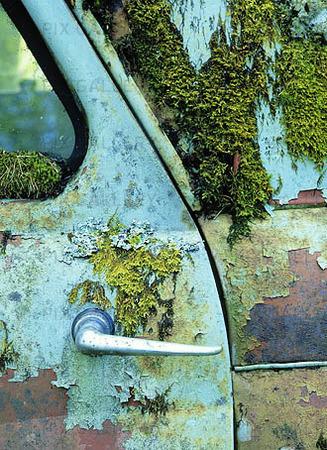 Bildetalj på skrotbil