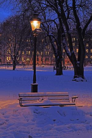 Vinter i Humlegården, Stockholm