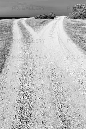 Grusväg som delar sig