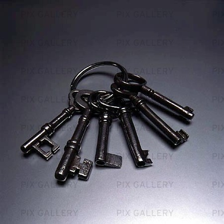 Nyckelknippa