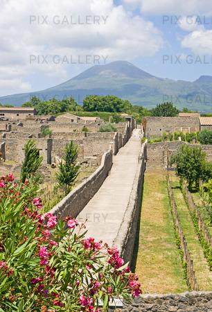 Gata i Pompeii