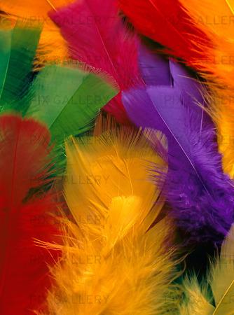 Påskfjädrar
