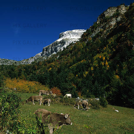 Valley of Hecho i Pyrenéerna, Spanien