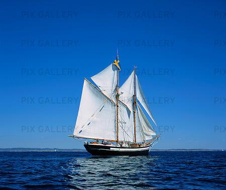 Segelfartyg på havet