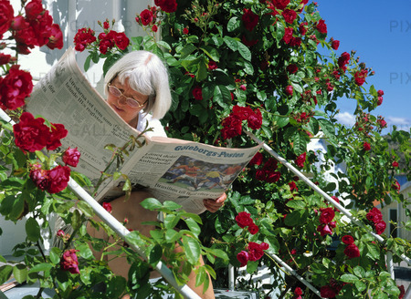 Kvinna läser tidning