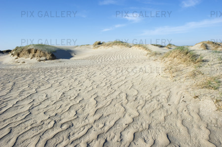 Sanddyner på Römö, Danmark