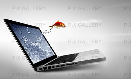 Guldfisk hoppa ut från dataskärm