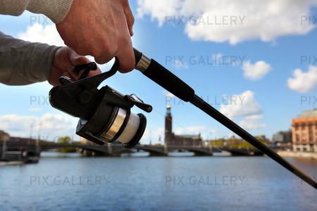 Fiske i Stockholm City