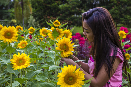Ung kvinna betraktar en solros