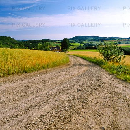 Grusväg i landskap