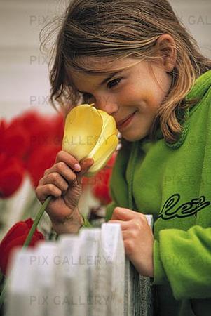 Flicka luktar på tulpan