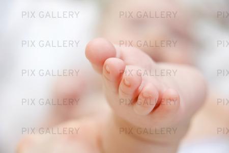 Bebis fot
