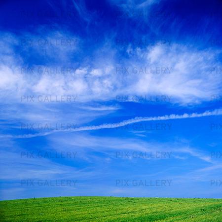 Blå himmel och grön äng