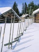 Fäbodar i vinterlandskap
