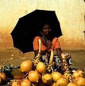 Fruktförsäljning i Sri Lanka